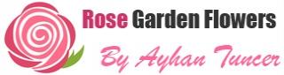 доставка цветов в Турцию Logo