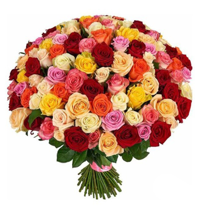 25 roses and teddy bear in the vase 101 Multi Colored Roses