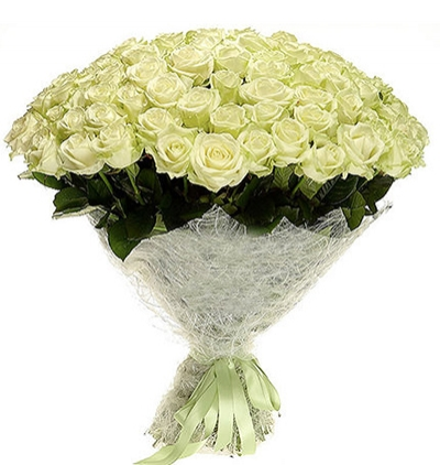 25 white roses bouquet 71 White Roses Bouquet