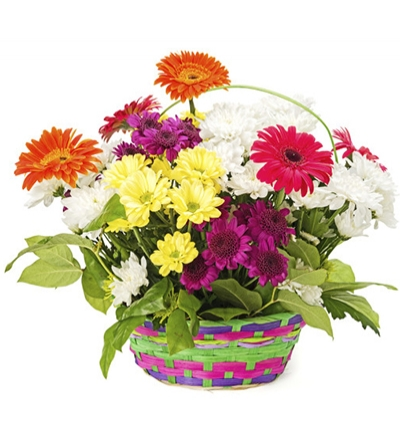 bouquet of lilies and roses Basket in Gerbera & Chrysanthemum