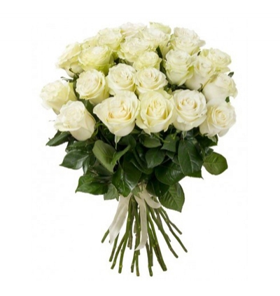 25 roses and teddy bear in the vase 19 white roses bouquet