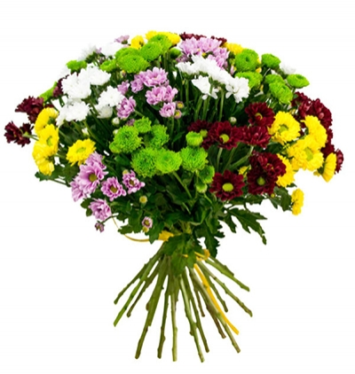gerbera and chrysanthemum in basket Chrysanthemum and Spray Rose