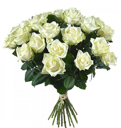 turkey flower delivery 21 white roses bouquet