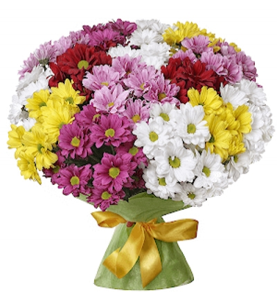 gerbera and chrysanthemum in basket Colored Chrizantem Bouquet