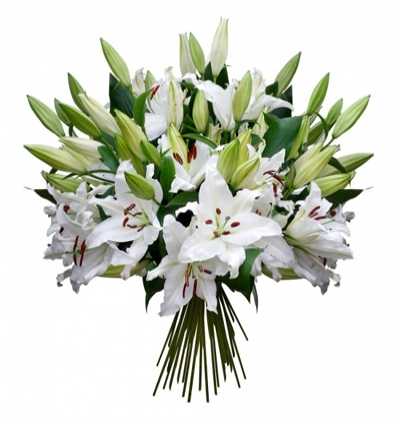 daisy in the bucket  White Lilies Bouquet