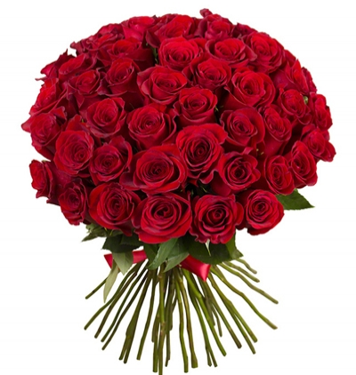25 roses and teddy bear in the vase 51 red roses bouquet