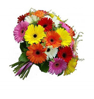 bouquet of lilium and local spring flowers Gerbera Bouquet